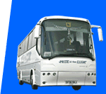 Image of executive coach